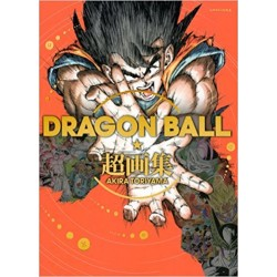 Dragon Ball Cho Gashu Super Art Book Akira Toriyama 1984- 2013