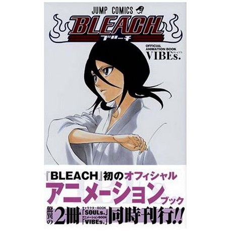 Bleach Official Animation Book Vibes